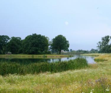 Early summer fot. A Sala